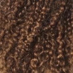 Coach my curls - cheveux frisés